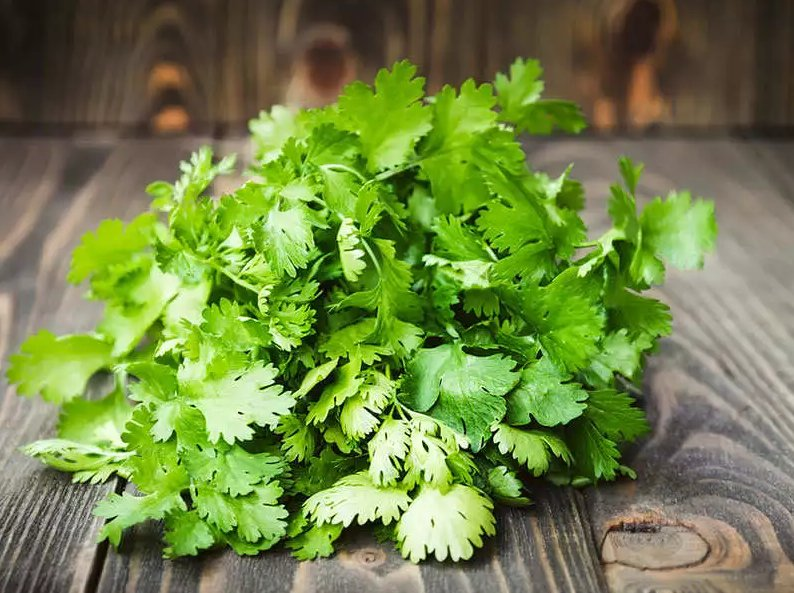 Cooking with Coriander
